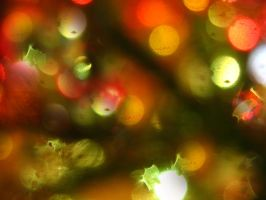 Christmas bokeh by Saffella