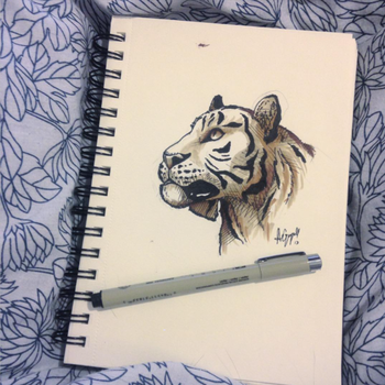 1. Tiger by Ageen