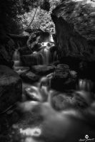 Soft Summer Water BW by mjohanson