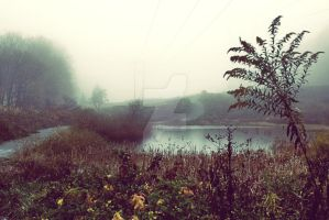 Foggy Pond by Ryan-Warner