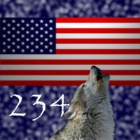 Happy 4th of July by IntelligentWolf