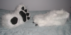 Border Collie Paws II by RoseHexwit