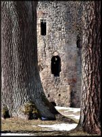 Ruins of Cesis castle... by Yancis