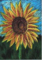 Sunflower by beprotybe
