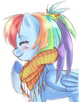 Dashie by NetaMenta