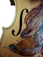 Birds on a Fiddle 2 by naomirandall
