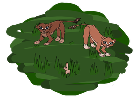 Commission - Lionesses by Cheshire-Maddie