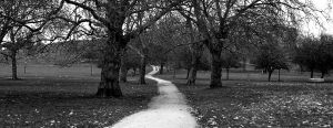 A Park In Camden by blink-click