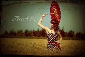 The 1950s Are Back by FDLphoto