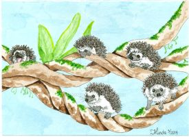 Daily Doodle #5 - TWISTED - Climbing Hedgehogs by MissMinda