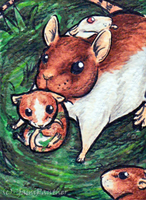 ACEO Rat by YamiPanther