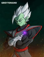 Zamasu + Black Vegeta by greytonano
