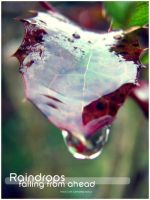 Raindrops falling from ahead by Lexana