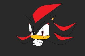 Shadow the hedgehog-on paint by xXSk8terVampireXx