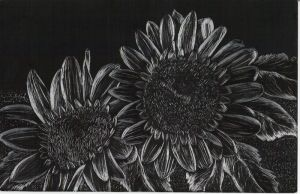 Etched Sunflowers by myrtleturtle