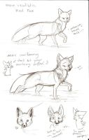 Tutorial Sketch: Fox 2 by Joava