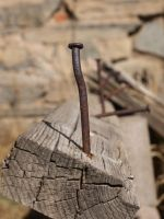 Rusty Nail in wood by fotophi