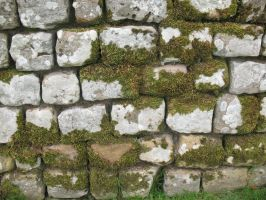 Stone Wall texture 9 by Random-Acts-Stock