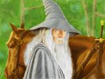 Gandalf the Grey by Scorpina