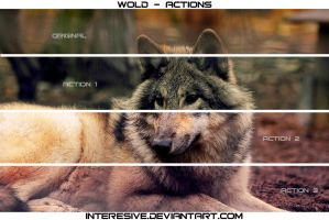 wolf - Actions by interesive