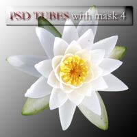 psd flowers with mask 4 by feniksas4