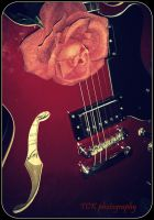 Le guitar with le rose. by ASFmaggot