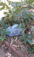 paper mache rock with sign by llothcat
