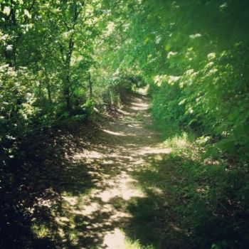 The Pathway. by isthisjackie