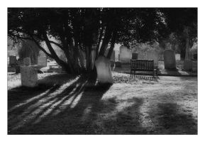 An Evening in the Churchyard 2 by Bogbrush