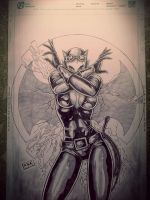 Catwoman by richardbue