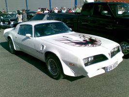 Right on Pic 13, Trans Am 2 by Asper-Sarnoff