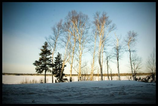 Frozen Lake II by elgrizzly