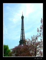 Eiffel Tower Hidding by Ana-D