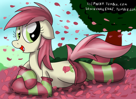 Rose in socks 30 min art challenge by Ziemniax