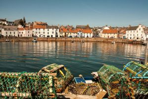Harbour view by SnapperRod