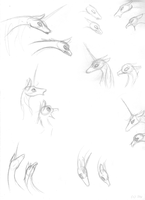 Study Sketches- Simicorn, Simippogryph by Sky-Lily
