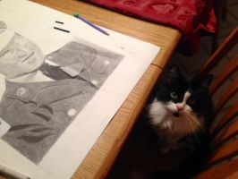 Picasso Cat by Shadowed-DarkNinja