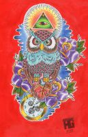 all seeing owl by Drewgovan