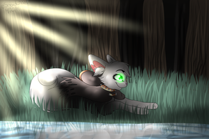 Sp for Penny-Forest by SnowLilies