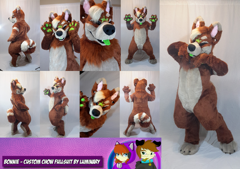 Bonnie - Custom Fullsuit Commission by Luminary! by OurMassHysteria