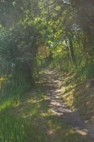 Chemin 3 by Jules171