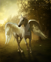 Pegasus by EnchantedWhispersArt
