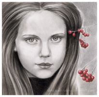 Berries by nabey