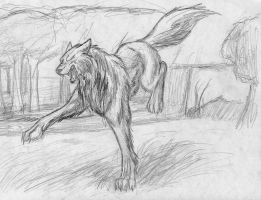 Running wolf by Julie-Destron