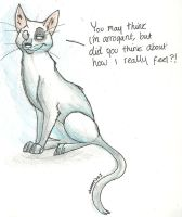 Cat that i forgot the name of by xLossen