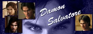 Damon Salvatore Banner by dodo91085