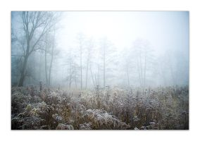 frozen part.8. by 5mm