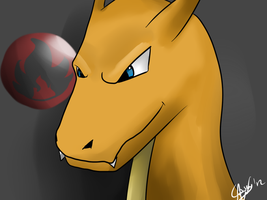 Charizard doodle by sceptile123