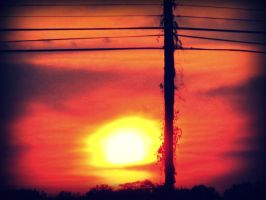 Red Sun by wolfycatlover38