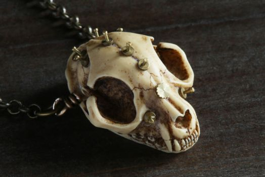 Steampunk cat skull amulet. by CatherinetteRings